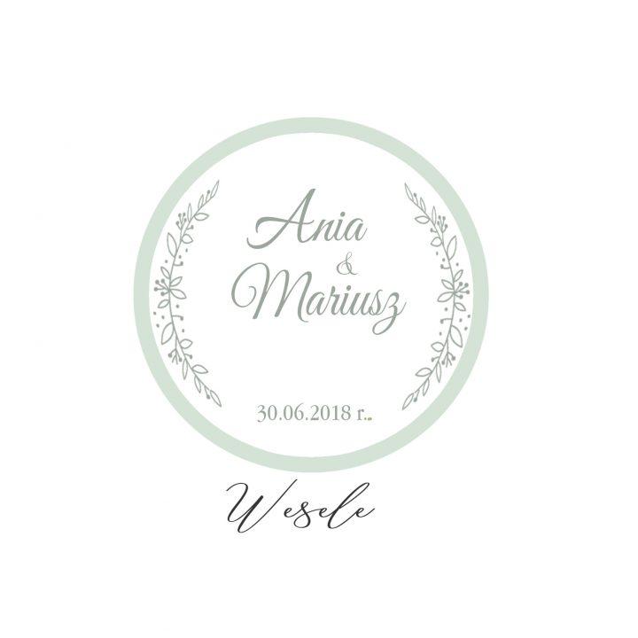 Ania & Mariusz wesele czerwiec 2018