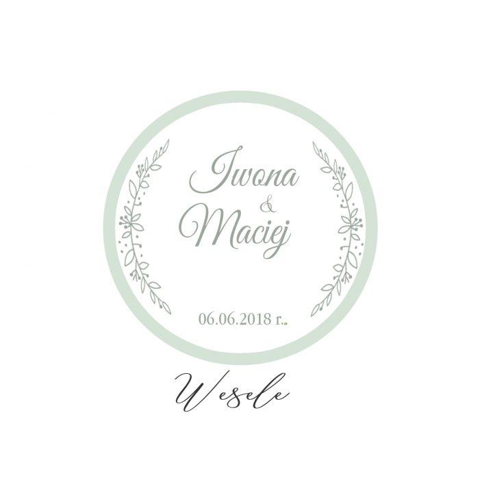 Iwona & Maciej 06 czerw 2018 WESELE