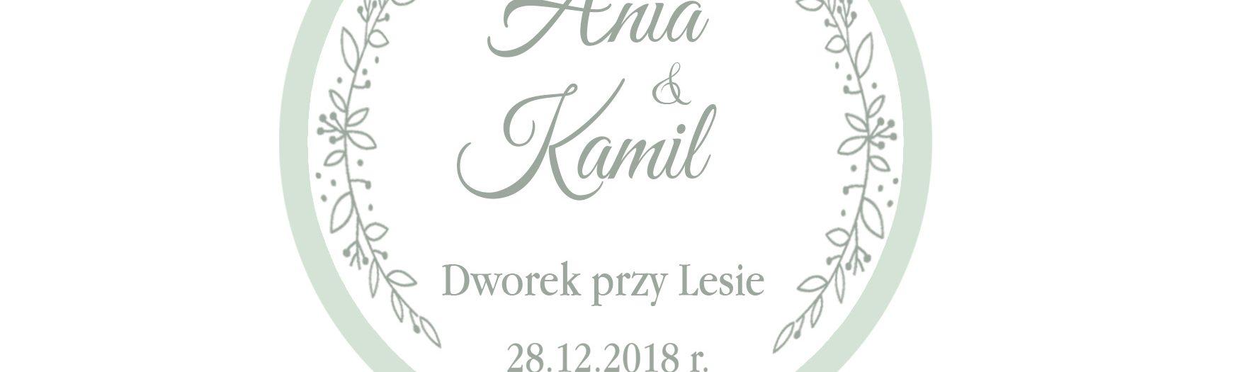 Anna&Kamil wesele - zabawa